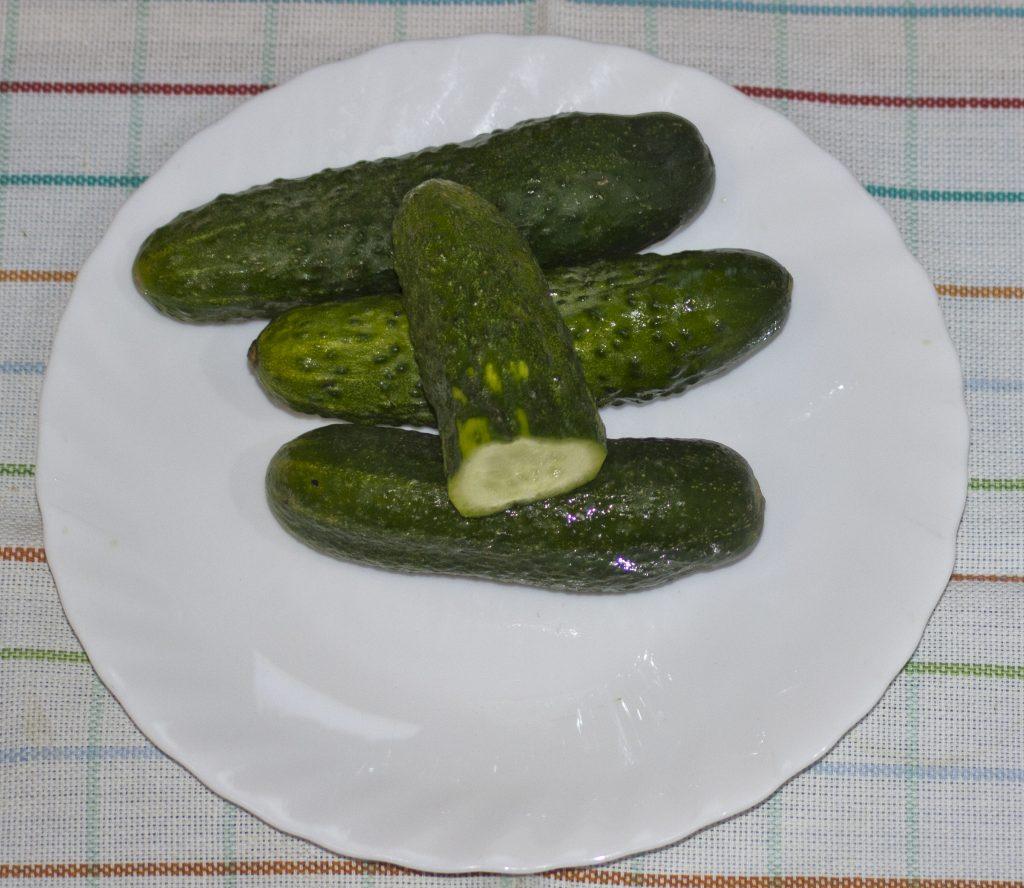 ogorki gr. 1