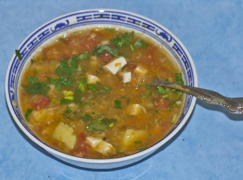 zupa z cz. socz